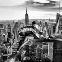 Nowy Jork według … Reginy Wypych