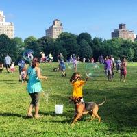 Nowy Jork z dziećmi (2)